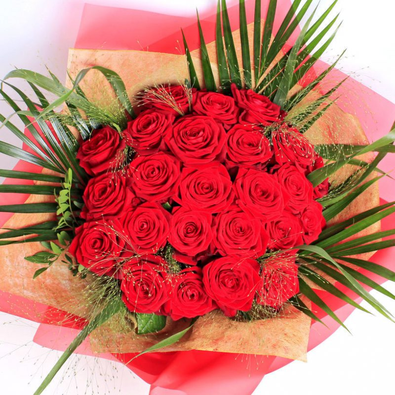 24_Red_Rose_Above