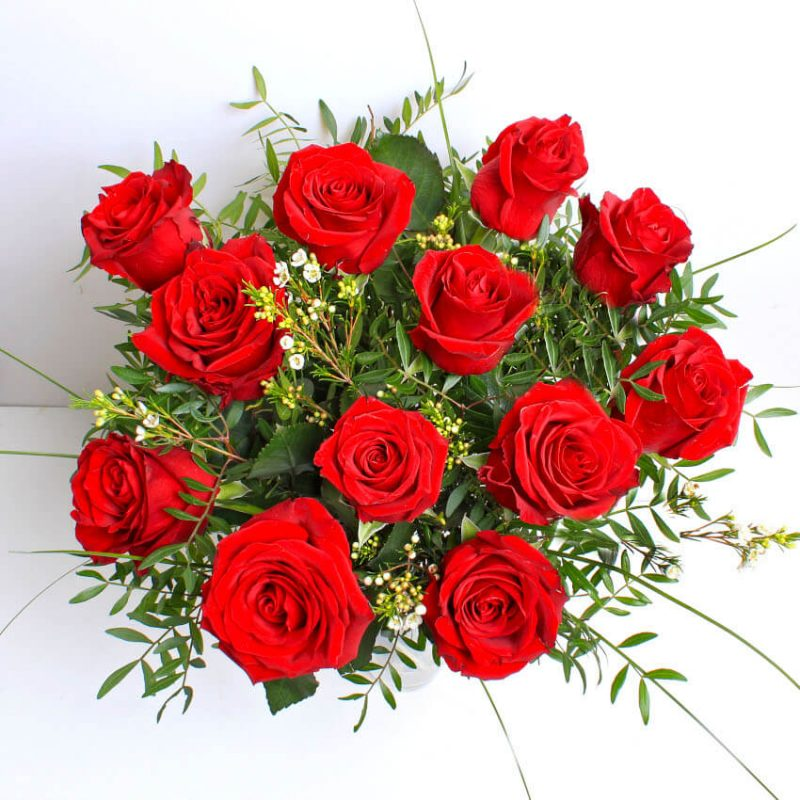 12 red roses above