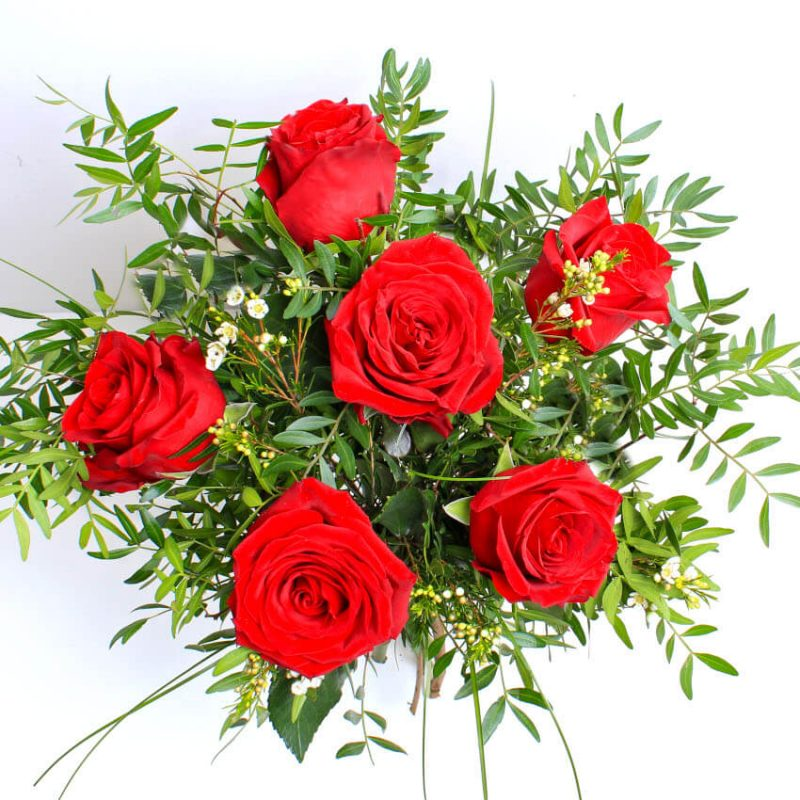 6 red roses above