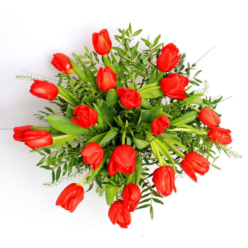 red tulips above