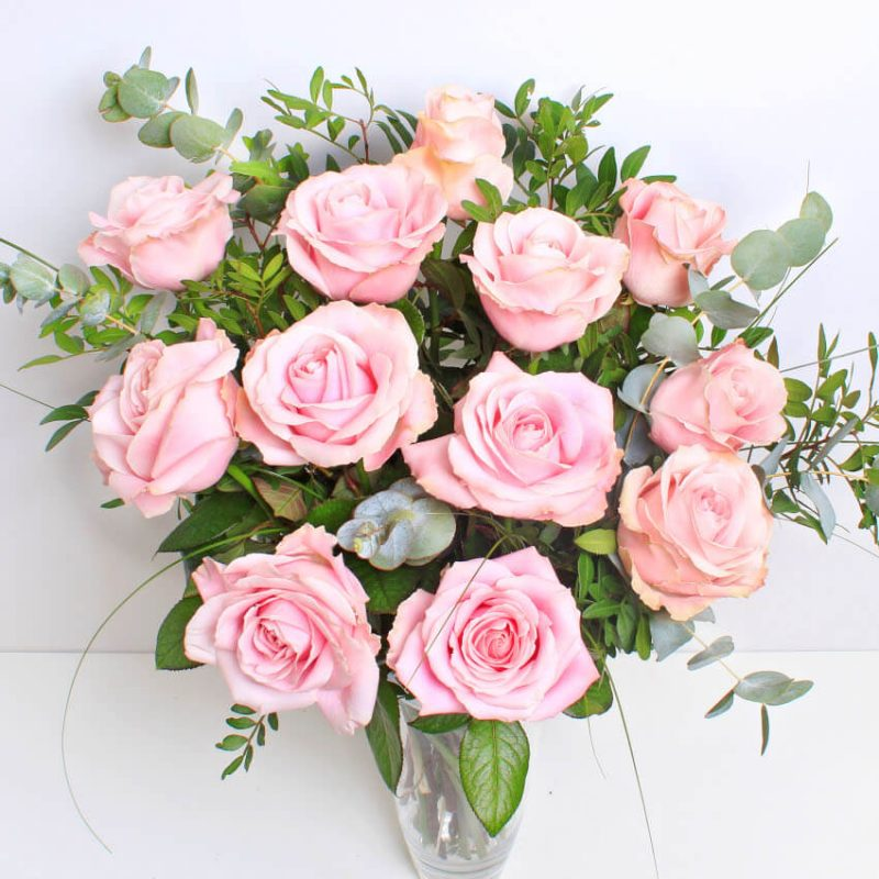12 Pink Roses Above